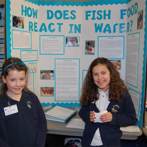 400 students compete at HWCDSB's annual science fair
