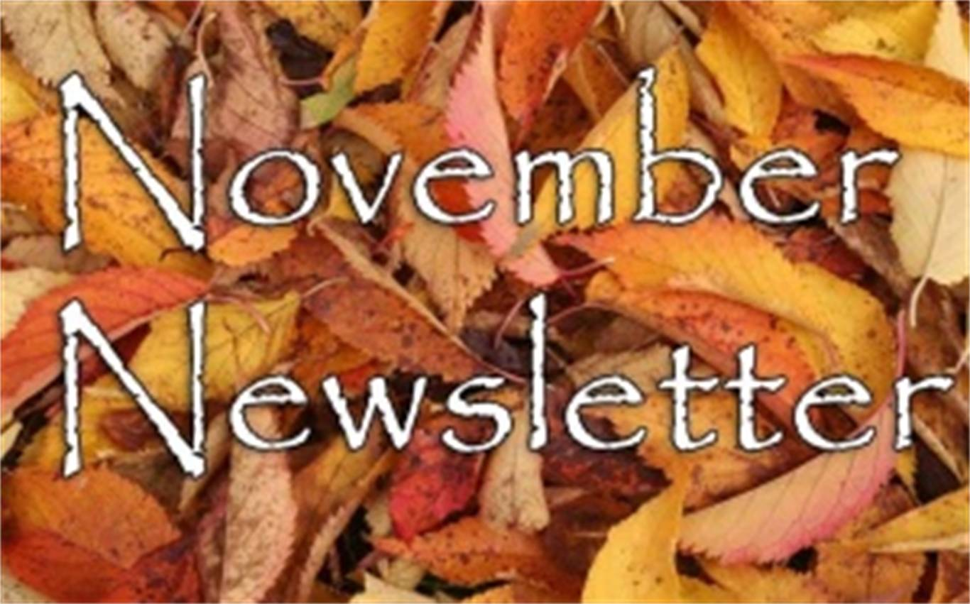 Newsletter for the Week on November 12, 2018